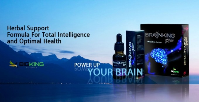 Jual Brainking Plus